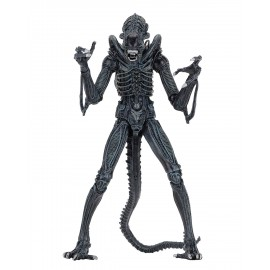 Figurine Alien Ultimate aliens warrior 1986