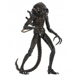 Figurine Alien Ultimate Aliens Warrior 1986 Brun